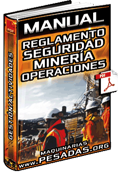 Descargar Manual de Reglamento de Seguridad