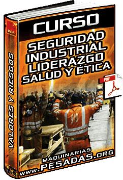 Curso: Seguridad Industrial – Liderazgo, Salud, Ética, Valores, Riesgos y Principios